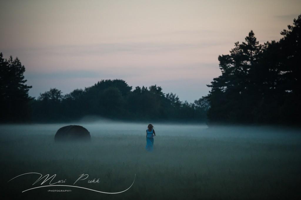 [et]Sügisõhtu udu[en_US] Autumn evening mist